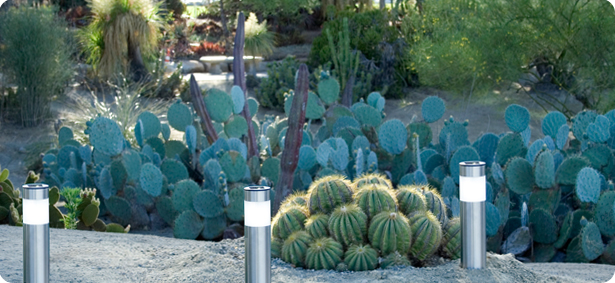 xeriscape solar light